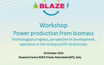 Workshop – Power production from biomass