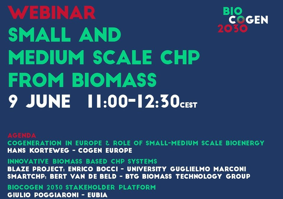 Small and medium-scale CHP from biomass: Horizon 2020 projects and the BIOCOGEN 2030 platform