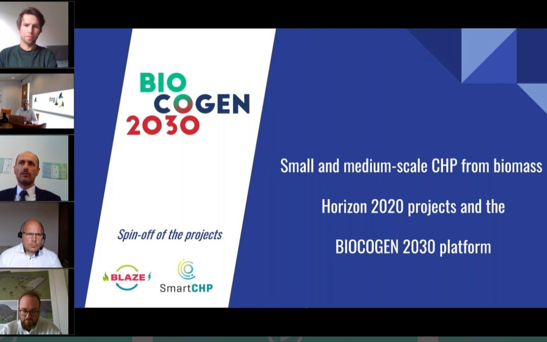 The first webinar of the  stakeholder platform BIOCOGEN 2030