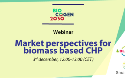 Market perspectives for biomass based CHP – BIOCOGEN 2030 webinar