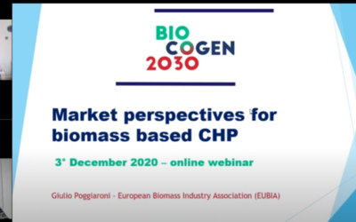 Market perspectives for small–medium scale CHP from biomass – 3rd BIOCOGEN 2030 webinar